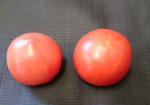 トマトMサイズとLサイズです。